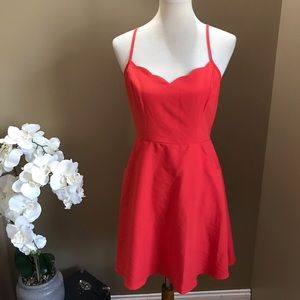 Market & Spruce Red Scalloped Fit & Flare Dress